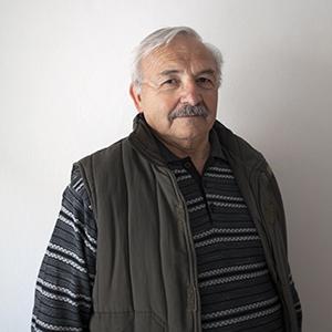 Dino Culpo
